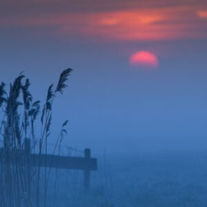 Magical blue twilight