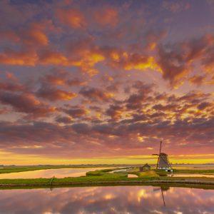 Dutch Landscape Texel