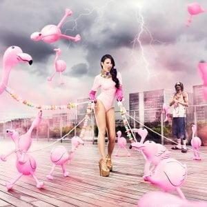 Flamingo Fun by Nicolas Bets